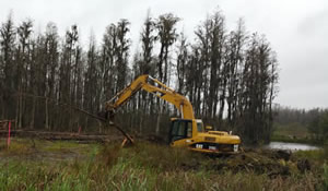 Excavating, Site Clearing in Tampla FL from TNT Environmental